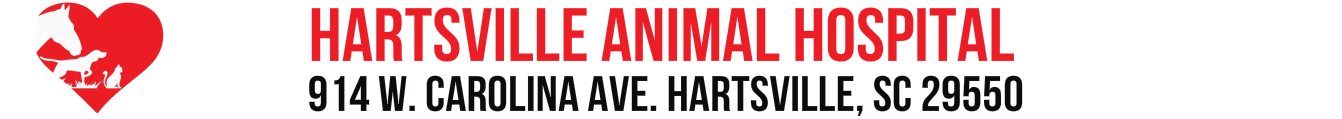 HARTSVILLE ANIMAL HOSPITAL